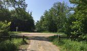 Randonnée Marche LACROIX-SAINT-OUEN - en forêt de Compiegne_16_Boquet Gras_Béthisy_Prés du Rosoir - Photo 65