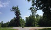 Randonnée Marche LACROIX-SAINT-OUEN - en forêt de Compiegne_16_Boquet Gras_Béthisy_Prés du Rosoir - Photo 55