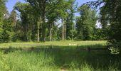 Randonnée Marche LACROIX-SAINT-OUEN - en forêt de Compiegne_16_Boquet Gras_Béthisy_Prés du Rosoir - Photo 37