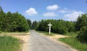 Randonnée Marche LACROIX-SAINT-OUEN - en forêt de Compiegne_16_Boquet Gras_Béthisy_Prés du Rosoir - Photo 29