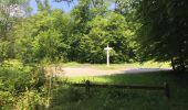 Randonnée Marche LACROIX-SAINT-OUEN - en forêt de Compiegne_16_Boquet Gras_Béthisy_Prés du Rosoir - Photo 14