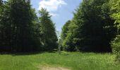 Randonnée Marche LACROIX-SAINT-OUEN - en forêt de Compiegne_16_Boquet Gras_Béthisy_Prés du Rosoir - Photo 9