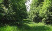 Randonnée Marche LACROIX-SAINT-OUEN - en forêt de Compiegne_16_Boquet Gras_Béthisy_Prés du Rosoir - Photo 6