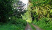 Randonnée Marche LACROIX-SAINT-OUEN - en forêt de Compiegne_16_Boquet Gras_Béthisy_Prés du Rosoir - Photo 109