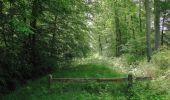 Randonnée Marche LACROIX-SAINT-OUEN - en forêt de Compiegne_16_Boquet Gras_Béthisy_Prés du Rosoir - Photo 13