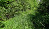 Randonnée Marche LACROIX-SAINT-OUEN - en forêt de Compiegne_16_Boquet Gras_Béthisy_Prés du Rosoir - Photo 23
