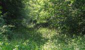 Randonnée Marche LACROIX-SAINT-OUEN - en forêt de Compiegne_16_Boquet Gras_Béthisy_Prés du Rosoir - Photo 76