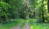 Randonnée Marche LACROIX-SAINT-OUEN - en forêt de Compiegne_16_Boquet Gras_Béthisy_Prés du Rosoir - Photo 98