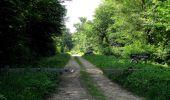 Randonnée Marche LACROIX-SAINT-OUEN - en forêt de Compiegne_16_Boquet Gras_Béthisy_Prés du Rosoir - Photo 63