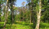 Randonnée Marche LACROIX-SAINT-OUEN - en forêt de Compiegne_16_Boquet Gras_Béthisy_Prés du Rosoir - Photo 34