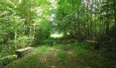Randonnée Marche LACROIX-SAINT-OUEN - en forêt de Compiegne_16_Boquet Gras_Béthisy_Prés du Rosoir - Photo 40