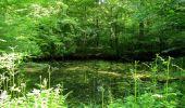 Randonnée Marche LACROIX-SAINT-OUEN - en forêt de Compiegne_16_Boquet Gras_Béthisy_Prés du Rosoir - Photo 72