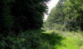 Randonnée Marche LACROIX-SAINT-OUEN - en forêt de Compiegne_16_Boquet Gras_Béthisy_Prés du Rosoir - Photo 83
