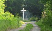 Randonnée Marche LACROIX-SAINT-OUEN - en forêt de Compiegne_16_Boquet Gras_Béthisy_Prés du Rosoir - Photo 1