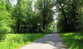 Randonnée Marche LACROIX-SAINT-OUEN - en forêt de Compiegne_16_Boquet Gras_Béthisy_Prés du Rosoir - Photo 60