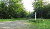 Randonnée Marche LACROIX-SAINT-OUEN - en forêt de Compiegne_16_Boquet Gras_Béthisy_Prés du Rosoir - Photo 115
