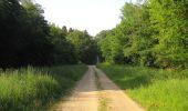 Randonnée Marche LACROIX-SAINT-OUEN - en forêt de Compiegne_16_Boquet Gras_Béthisy_Prés du Rosoir - Photo 111