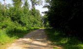 Randonnée Marche LACROIX-SAINT-OUEN - en forêt de Compiegne_16_Boquet Gras_Béthisy_Prés du Rosoir - Photo 68