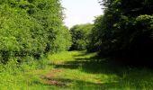 Randonnée Marche LACROIX-SAINT-OUEN - en forêt de Compiegne_16_Boquet Gras_Béthisy_Prés du Rosoir - Photo 41