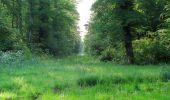 Randonnée Marche LACROIX-SAINT-OUEN - en forêt de Compiegne_16_Boquet Gras_Béthisy_Prés du Rosoir - Photo 113