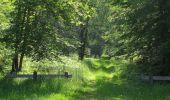 Randonnée Marche LACROIX-SAINT-OUEN - en forêt de Compiegne_16_Boquet Gras_Béthisy_Prés du Rosoir - Photo 52