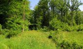 Randonnée Marche LACROIX-SAINT-OUEN - en forêt de Compiegne_16_Boquet Gras_Béthisy_Prés du Rosoir - Photo 32