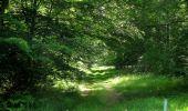 Randonnée Marche LACROIX-SAINT-OUEN - en forêt de Compiegne_16_Boquet Gras_Béthisy_Prés du Rosoir - Photo 7