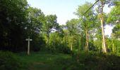 Randonnée Marche LACROIX-SAINT-OUEN - en forêt de Compiegne_16_Boquet Gras_Béthisy_Prés du Rosoir - Photo 5