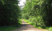 Randonnée Marche LACROIX-SAINT-OUEN - en forêt de Compiegne_16_Boquet Gras_Béthisy_Prés du Rosoir - Photo 20