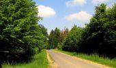 Randonnée Marche LACROIX-SAINT-OUEN - en forêt de Compiegne_16_Boquet Gras_Béthisy_Prés du Rosoir - Photo 27