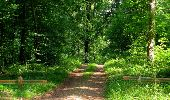 Randonnée Marche LACROIX-SAINT-OUEN - en forêt de Compiegne_16_Boquet Gras_Béthisy_Prés du Rosoir - Photo 80