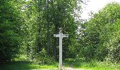 Randonnée Marche LACROIX-SAINT-OUEN - en forêt de Compiegne_16_Boquet Gras_Béthisy_Prés du Rosoir - Photo 10