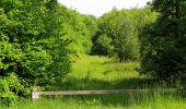 Randonnée Marche LACROIX-SAINT-OUEN - en forêt de Compiegne_16_Boquet Gras_Béthisy_Prés du Rosoir - Photo 53