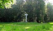 Randonnée Marche LACROIX-SAINT-OUEN - en forêt de Compiegne_16_Boquet Gras_Béthisy_Prés du Rosoir - Photo 99