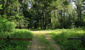Randonnée Marche LACROIX-SAINT-OUEN - en forêt de Compiegne_16_Boquet Gras_Béthisy_Prés du Rosoir - Photo 81