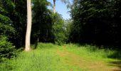 Randonnée Marche LACROIX-SAINT-OUEN - en forêt de Compiegne_16_Boquet Gras_Béthisy_Prés du Rosoir - Photo 82