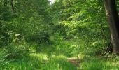 Randonnée Marche LACROIX-SAINT-OUEN - en forêt de Compiegne_16_Boquet Gras_Béthisy_Prés du Rosoir - Photo 84