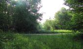 Randonnée Marche LACROIX-SAINT-OUEN - en forêt de Compiegne_16_Boquet Gras_Béthisy_Prés du Rosoir - Photo 112