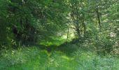 Randonnée Marche LACROIX-SAINT-OUEN - en forêt de Compiegne_16_Boquet Gras_Béthisy_Prés du Rosoir - Photo 89