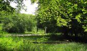 Randonnée Marche LACROIX-SAINT-OUEN - en forêt de Compiegne_16_Boquet Gras_Béthisy_Prés du Rosoir - Photo 18