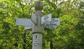 Randonnée Marche LACROIX-SAINT-OUEN - en forêt de Compiegne_16_Boquet Gras_Béthisy_Prés du Rosoir - Photo 88