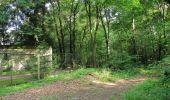 Randonnée Marche LACROIX-SAINT-OUEN - en forêt de Compiegne_16_Boquet Gras_Béthisy_Prés du Rosoir - Photo 100