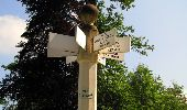 Randonnée Marche LACROIX-SAINT-OUEN - en forêt de Compiegne_16_Boquet Gras_Béthisy_Prés du Rosoir - Photo 50