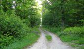 Randonnée Marche LACROIX-SAINT-OUEN - en forêt de Compiegne_16_Boquet Gras_Béthisy_Prés du Rosoir - Photo 118