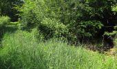 Randonnée Marche LACROIX-SAINT-OUEN - en forêt de Compiegne_16_Boquet Gras_Béthisy_Prés du Rosoir - Photo 24
