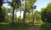 Randonnée Marche LACROIX-SAINT-OUEN - en forêt de Compiegne_16_Boquet Gras_Béthisy_Prés du Rosoir - Photo 107