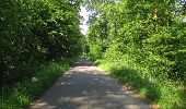 Randonnée Marche LACROIX-SAINT-OUEN - en forêt de Compiegne_16_Boquet Gras_Béthisy_Prés du Rosoir - Photo 56