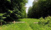 Randonnée Marche LACROIX-SAINT-OUEN - en forêt de Compiegne_16_Boquet Gras_Béthisy_Prés du Rosoir - Photo 11