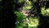Randonnée Marche LACROIX-SAINT-OUEN - en forêt de Compiegne_16_Boquet Gras_Béthisy_Prés du Rosoir - Photo 101