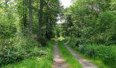 Randonnée Marche LACROIX-SAINT-OUEN - en forêt de Compiegne_16_Boquet Gras_Béthisy_Prés du Rosoir - Photo 12